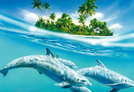 Украшения в виде дельфинов